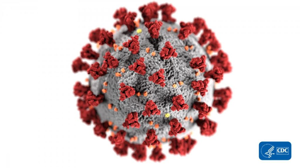 Food Safety and coronavirus