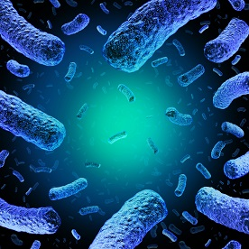 Microbiological Environmental Monitoring Program for Listeria monocytogenes